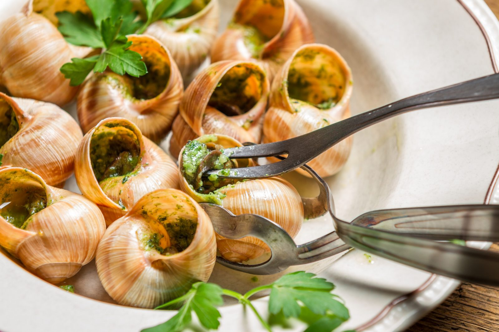 French escargots la bourguignonne magazine worldpass - Cuisine bourguignonne ...